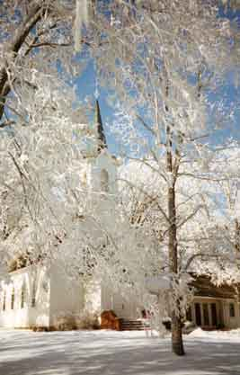 Wintry photo of the church hidden behind frosty tree branches.